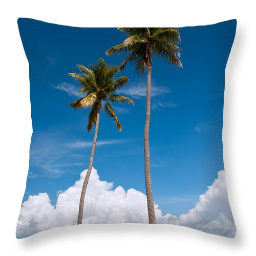 Coconut Throw Pillow featuring the photograph Coconut Trees by Kim Pin Tan