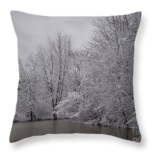 Landscape Prints Throw Pillow featuring the photograph Coe Lake by R A W M