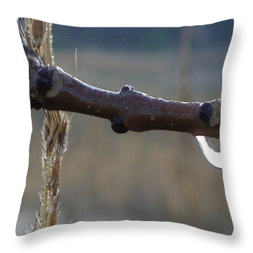 Nature Throw Pillow featuring the photograph Cold And Silent by Peggy King
