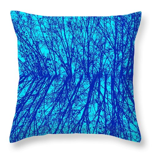 Earthy Throw Pillow featuring the photograph Cold Blue by Chris Berry