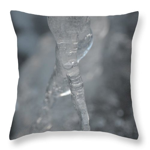Cold Finger Throw Pillow featuring the photograph Cold Finger by Maria Urso