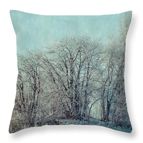 Winter Throw Pillow featuring the photograph Cold Winter Day by Ari Salmela
