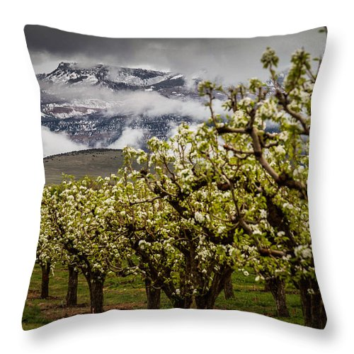 Mt Garfield Throw Pillow featuring the photograph Colliding Seasons by Laurie Purcell