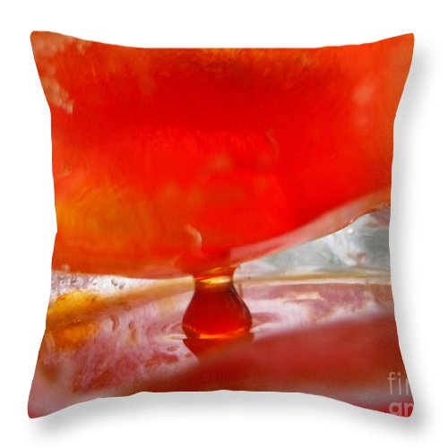 Color In Ice Series 3 Throw Pillow featuring the photograph Color In Ice Series 3 by Paddy Shaffer