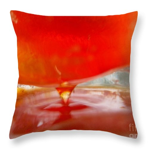 Color In Ice Series 4 Throw Pillow featuring the photograph Color In Ice Series 4 by Paddy Shaffer