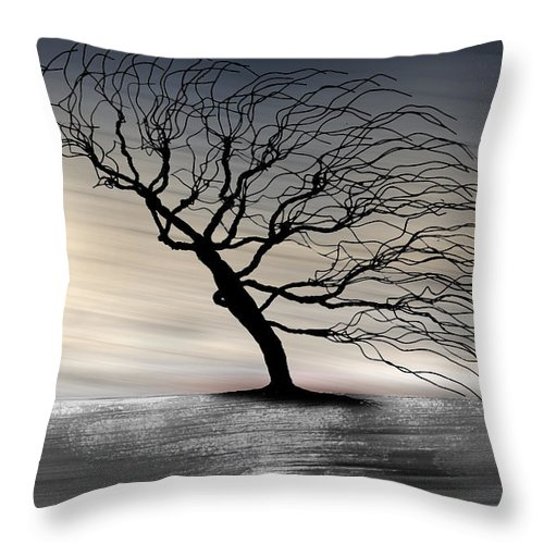 Landscape Throw Pillow featuring the photograph Color Of The Wind by Gray Artus