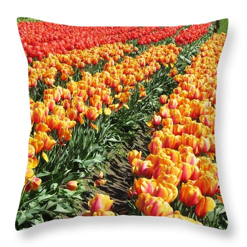 Flowers Throw Pillow featuring the photograph Color Waves by Steve Burton