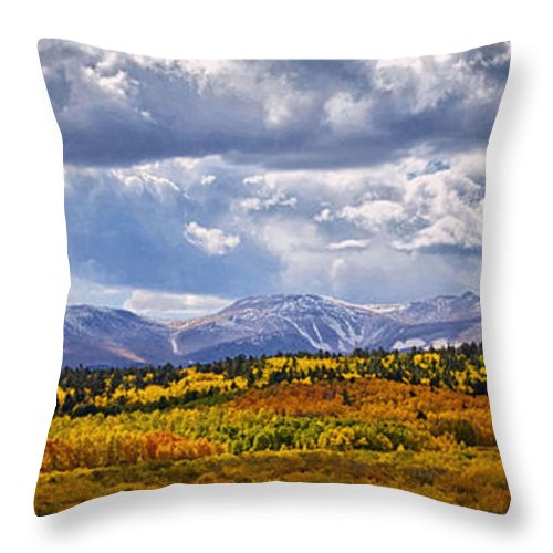 Mountain Throw Pillow featuring the photograph Colorado Landscape by OLena Art Brand