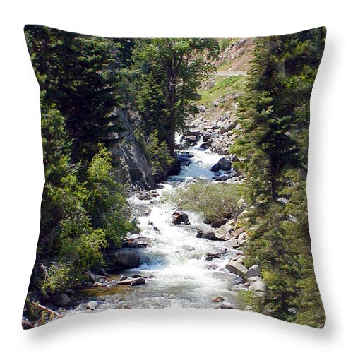 Colorado Throw Pillow featuring the photograph Colorado On My Mind by Donna Proctor