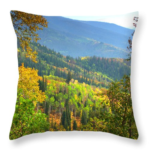 Colorful Colorado Turning Aspens Mountain Landscape Scene Throw Pillow featuring the photograph Colorful Colorado by Brian Harig