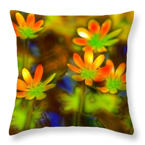 Colorful Throw Pillow featuring the photograph Colorful Flowers by Andy Mars