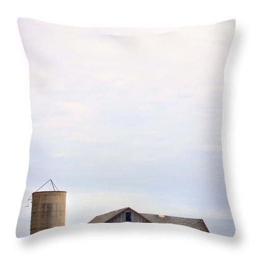 Old; Farm; Barn; Rural; Outside; Outdoors; Aged; Silo; Building; Architecture; Wood; Wooden; Grass; Worn; Field; Weeds; Out Of Focus; Blur; Blurry; Blurred; Queen Anne's Lace; Dried; Dry; Fall; Autumn; Brown; Carrot Weed Throw Pillow featuring the photograph Colorful Past by Margie Hurwich