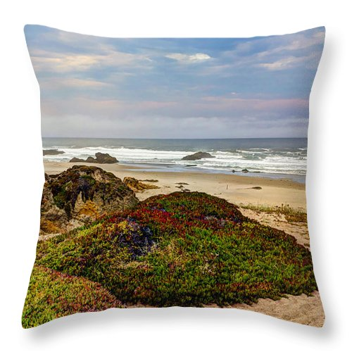 American Throw Pillow featuring the photograph Colors And Texures Of The California Coast by Heidi Smith