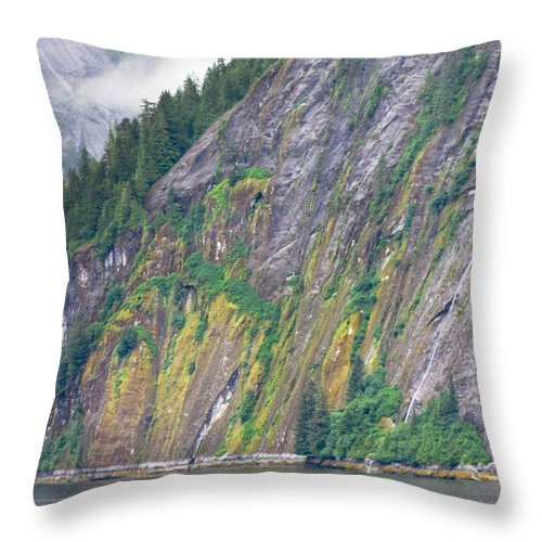 Landscape Throw Pillow featuring the photograph Colors Of Alaska - Misty Fjords by Natalie Rotman Cote