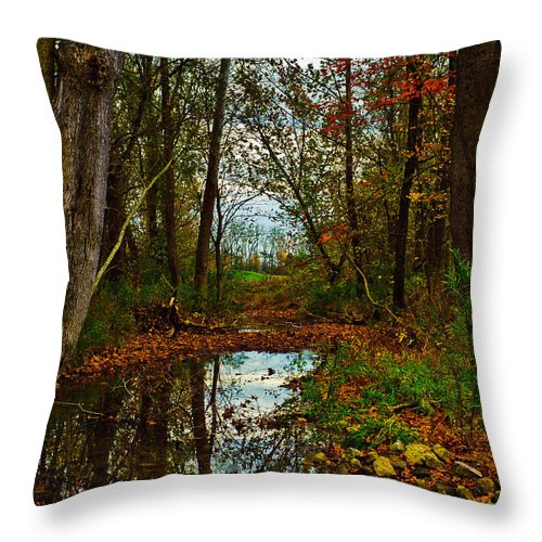 Landscape Throw Pillow featuring the photograph Colors Of Fall by Kristi Swift