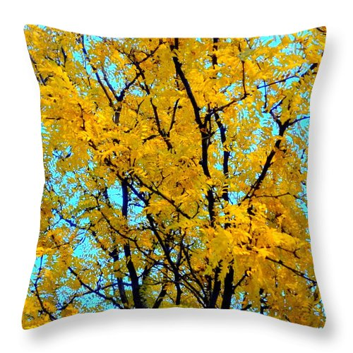 Tree Throw Pillow featuring the photograph Colors Of Fall - Smatter by Deborah Crew-Johnson