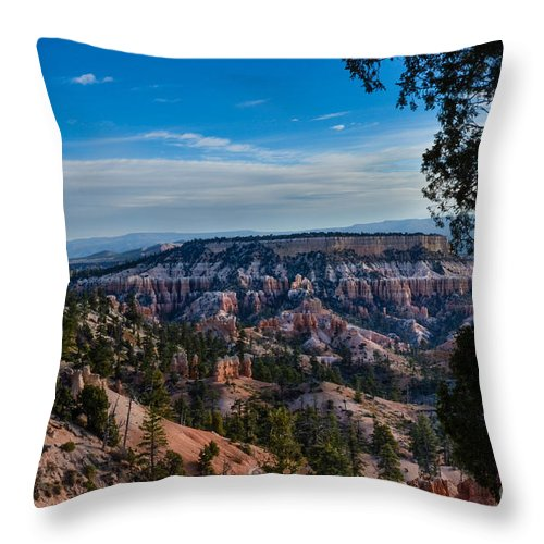 Brown Throw Pillow featuring the photograph Colors Of Time by Rich Priest