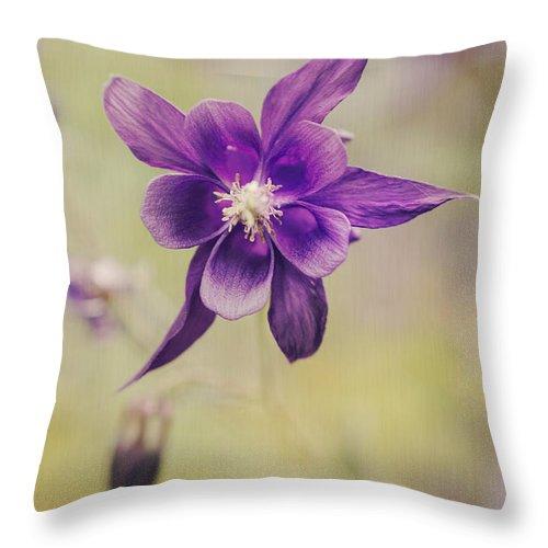 Nature Throw Pillow featuring the photograph Columbine Flower by AugenWerk Susann Serfezi