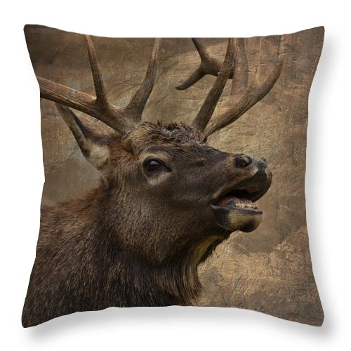 Come To Me Throw Pillow featuring the photograph Come To Me by Wes and Dotty Weber