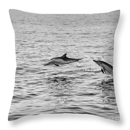 Common Dolphin Throw Pillow featuring the photograph Common Dolphins Leaping. by Jamie Pham