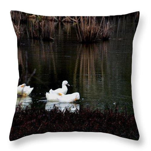 Companionship Throw Pillow featuring the photograph Companionship by Maria Urso