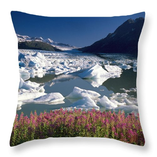 Frozen Throw Pillow featuring the photograph Composite View Of Colony Glacier W by Jeff Schultz