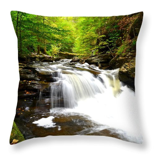 Ricketts Throw Pillow featuring the photograph Conestoga Falls by Frozen in Time Fine Art Photography