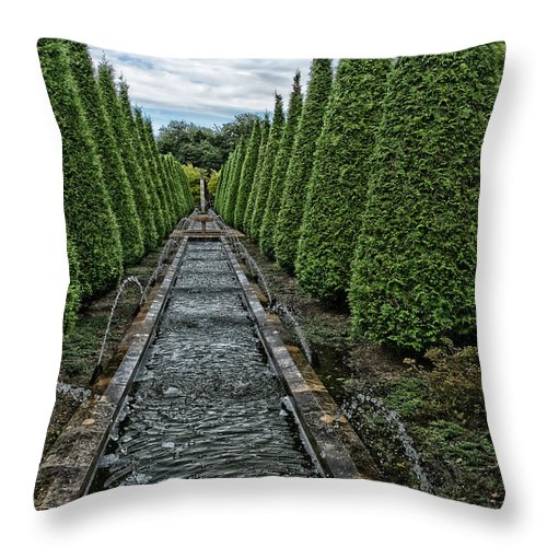 Conifer Water Feature Throw Pillow featuring the photograph Conifer Lined Water Feature by Brothers Beerens
