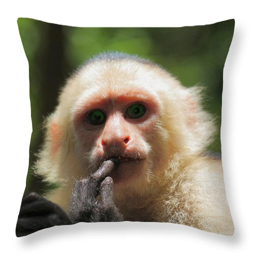 Contemplation Throw Pillow featuring the photograph Contemplation by Patrick Witz