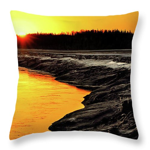 Alaska Throw Pillow featuring the photograph Contrasts In Nature by Ron Day