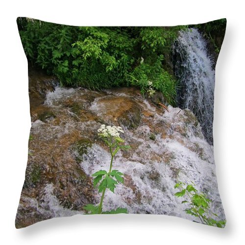 Water Fall Prints Throw Pillow featuring the photograph Cool Clear Water by John Malone