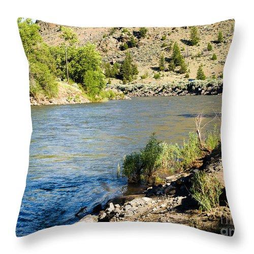 Yellowstone Throw Pillow featuring the photograph Cool N Fresh by Tara Lynn