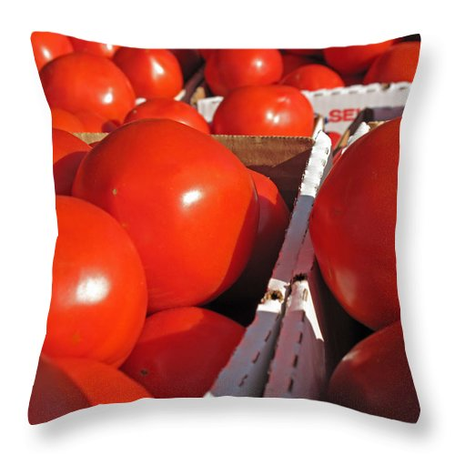 Tomato Throw Pillow featuring the photograph Cool Tomatoes by Barbara McDevitt