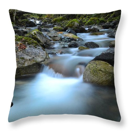 Water Throw Pillow featuring the photograph Coquihalla River 2 by Randy Giesbrecht