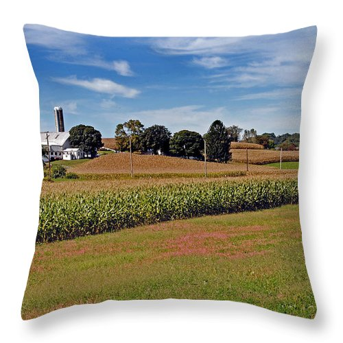Scenic Tours Throw Pillow featuring the photograph Corn Farmer by Skip Willits