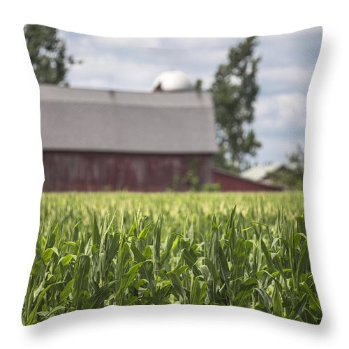 Michigan Throw Pillow featuring the photograph Corn Field And Barn by John McGraw