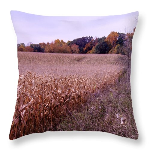 Fall Throw Pillow featuring the photograph Corn Field In The Fall by Paul Cannon