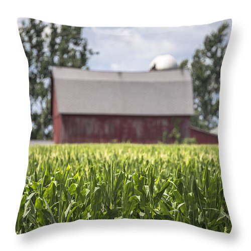 Michigan Throw Pillow featuring the photograph Corn With A Red Barn by John McGraw