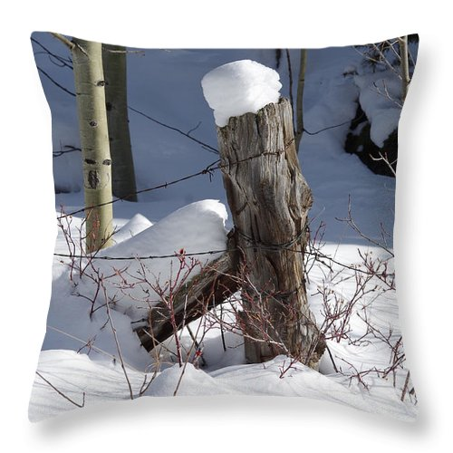 Colorado Photographs Throw Pillow featuring the photograph Corner Post by Gary Benson