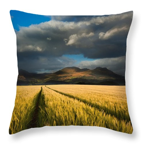 Landscape Throw Pillow featuring the photograph Cornfield Mountains by Matthew Gibson