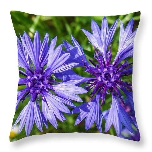 Closeup Throw Pillow featuring the painting Cornflowers Growing In A Field by Jeelan Clark