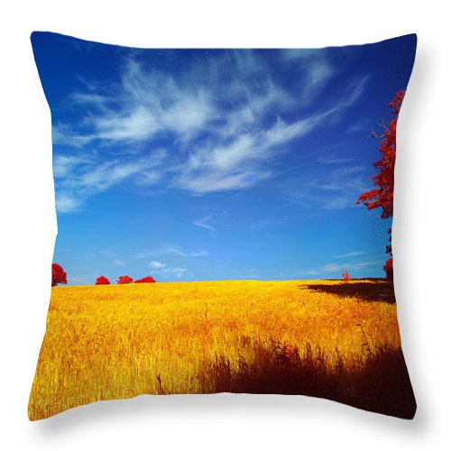 Landscape Throw Pillow featuring the photograph Cornish Barley Field by Antony Mitchell