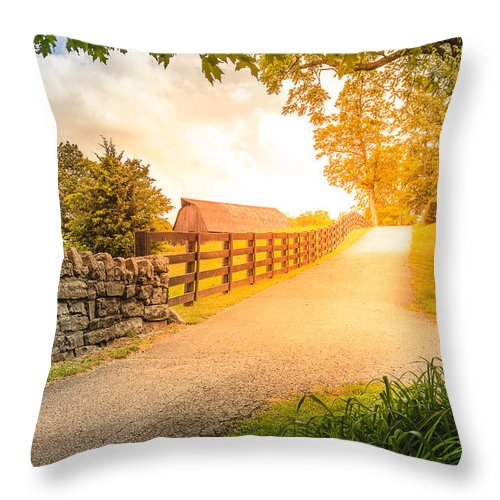 Agriculture Throw Pillow featuring the photograph Country Alley by Alexey Stiop