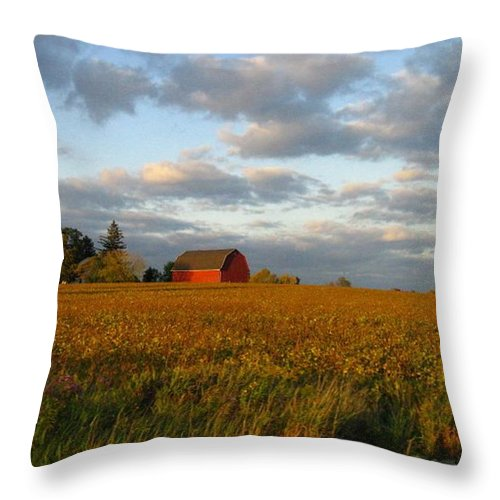 Landscape Throw Pillow featuring the photograph Country Backroad by Rhonda Barrett