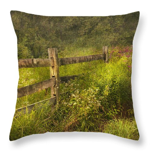 Country Throw Pillow featuring the photograph Country - Fence - County Border by Mike Savad