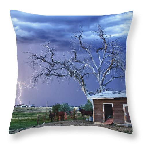 Country Throw Pillow featuring the photograph Country Horses Lightning Storm Ne Boulder County Co Hdr by James BO Insogna
