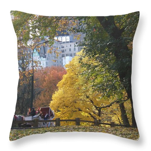 central Park Throw Pillow featuring the photograph Country Ride In The City by Barbara McDevitt