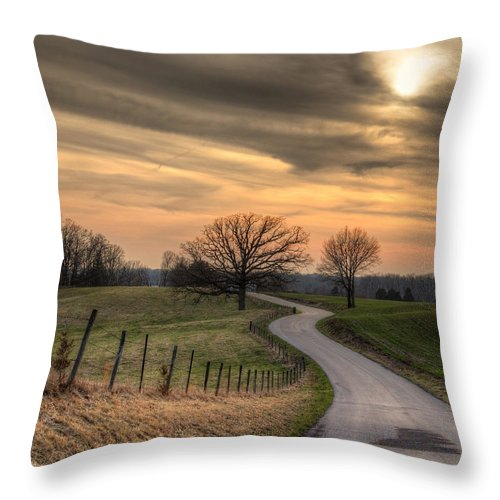 2014 Throw Pillow featuring the photograph Country Road At Sunset by Larry Braun
