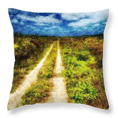 Dirt Road Throw Pillow featuring the digital art Country Road by Gary D Baker