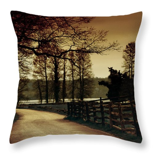 Throw Pillow featuring the photograph Country Roads by Anita Miller